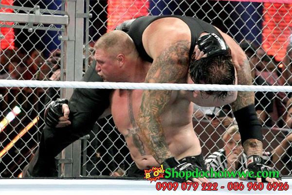 #2 The Undertaker vs. Brock Lesnar - Hell in a Cell 2015
