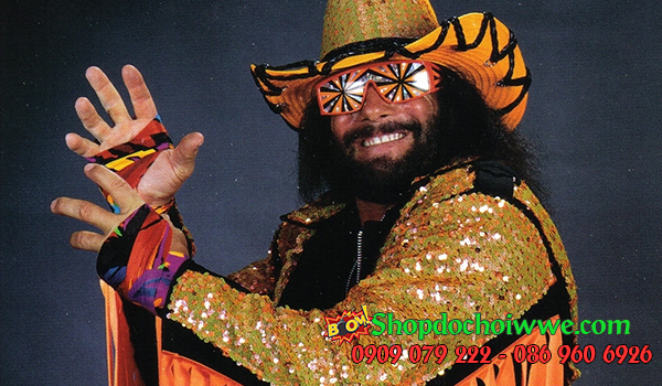wwe Randy Savage